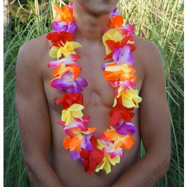 collier de fleur fête hawaïenne