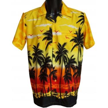 chemise fantaisie