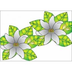 paréo fleuri