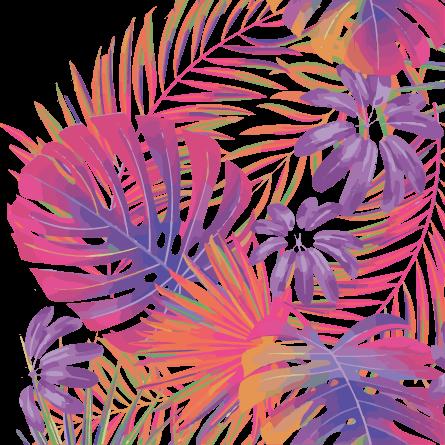 Chemise Hawaienne   Chemise à Fleurs   Vetement enfant